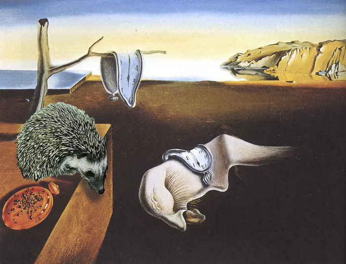 The Persistence Of Hedgehog By Salvador Dali (1930)