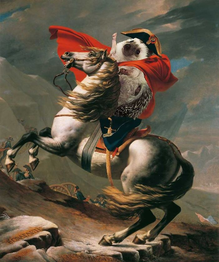 "Jacques-Louis David's ""Hedgehog Crossing The Alps"" (1800)"