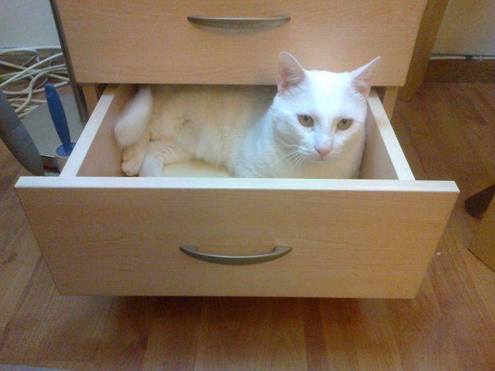 Not Only Do I Fit But Also ...