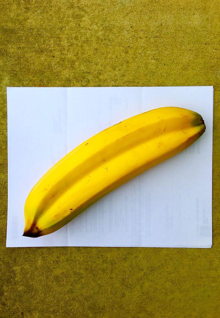 Twin Bananas!!