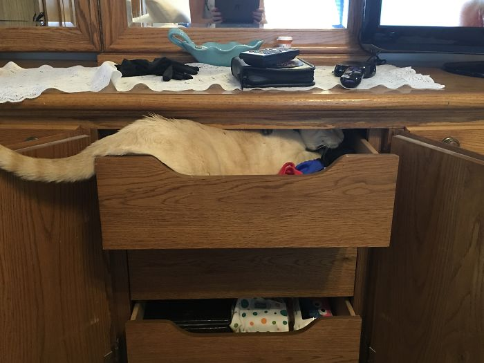 I Can Fit, I Am Sure I Can Fit