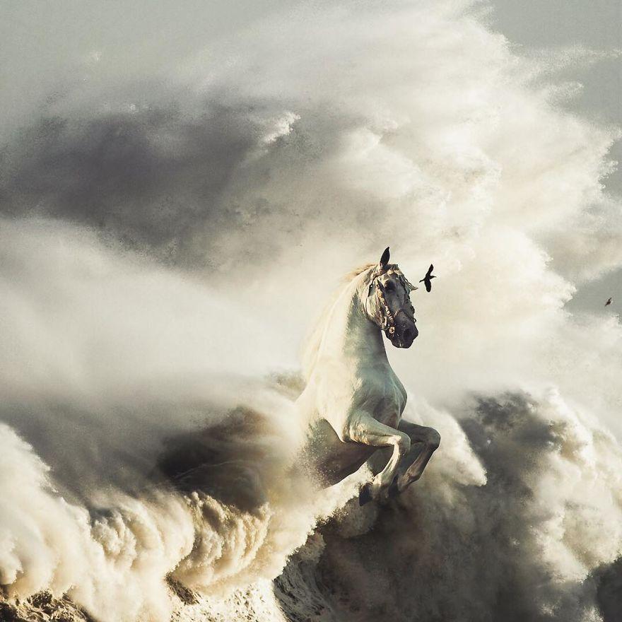 Pegasus On The Run