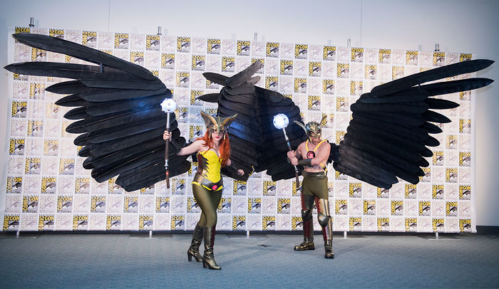Hawkgirl And Hawkman