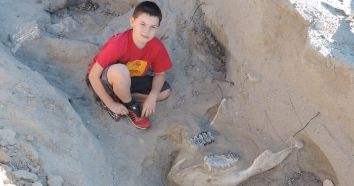 Boy Discovers Million-Year-Old Fossil By Tripping Over It