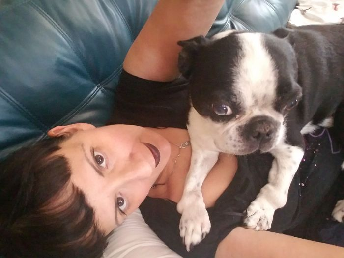 Henry..my 10 Year Old Boston Terrier. He's A Cancer Survivor,. He Has Severe Arthriitis.