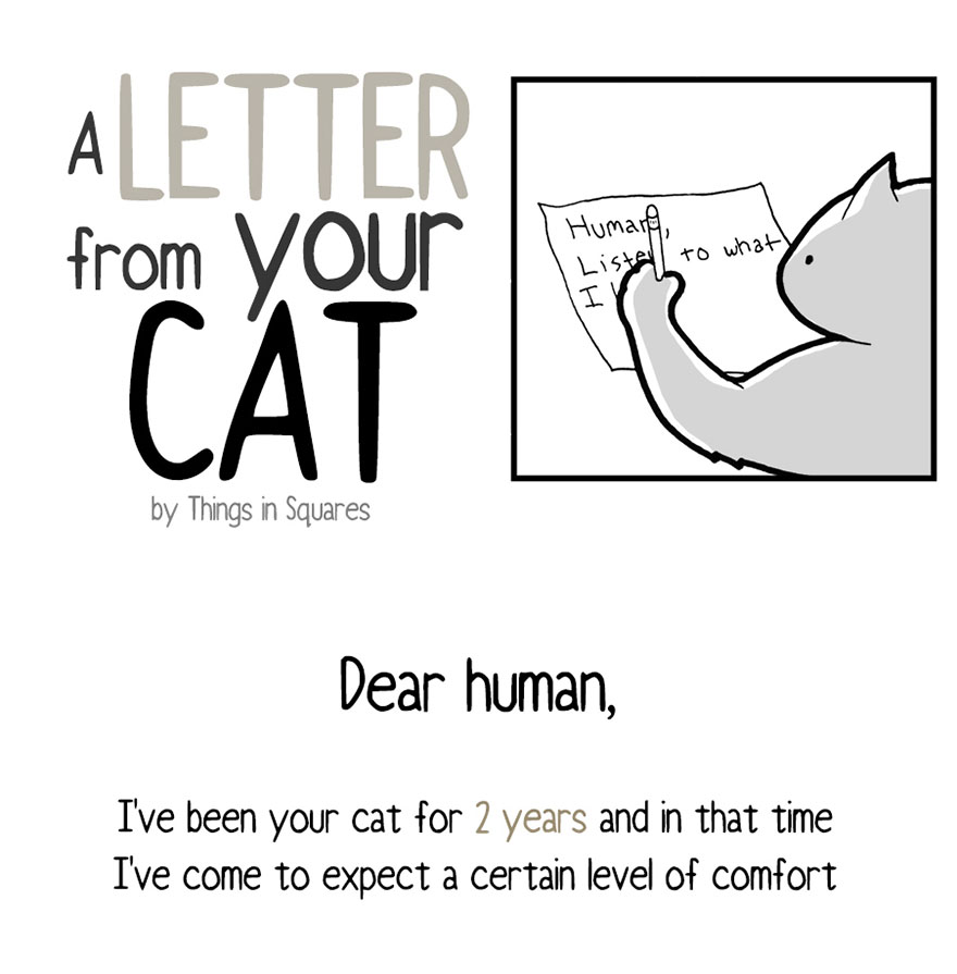 A Letter From Your Cat