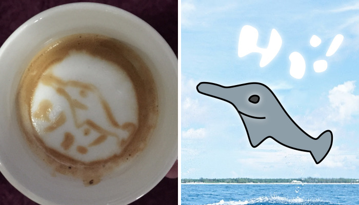 My Wife Thinks She Is Picasso Of The Barista World
