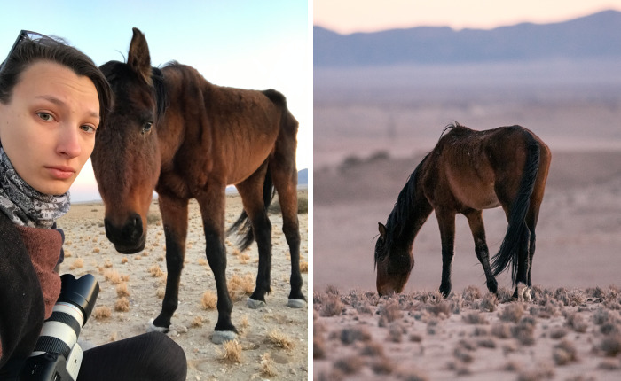 I Met A Fading Myth In Namibia And It Broke My Heart