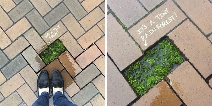 10+ Actos de vandalismo genial (2ª parte)