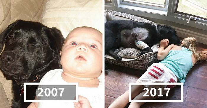 Woman Tells Her Sister NOT To Have A Puppy When She Has A Baby, But She Doesn't Listen