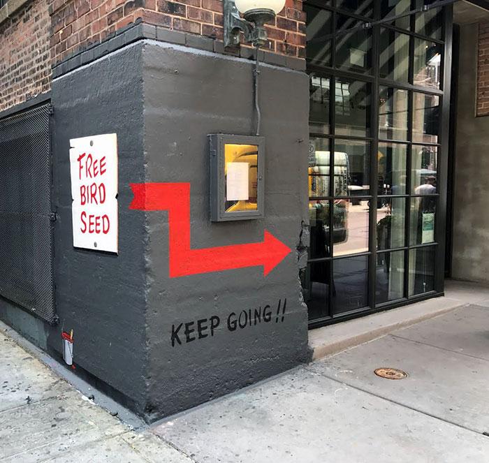 free-bird-seed-graffiti-chicago-e-lee-2