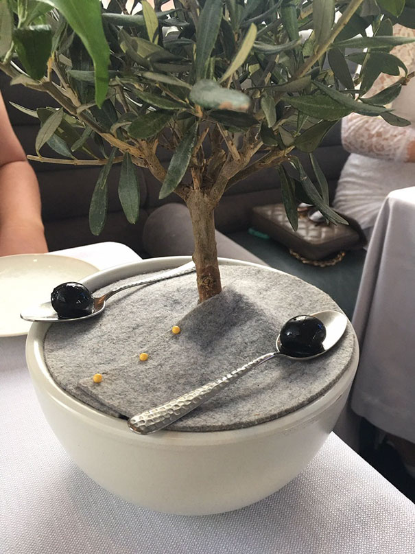 I Only Like My Olives To Be Served On A Silver Spoon And Placed Beneath A Miniature Olive Tree
