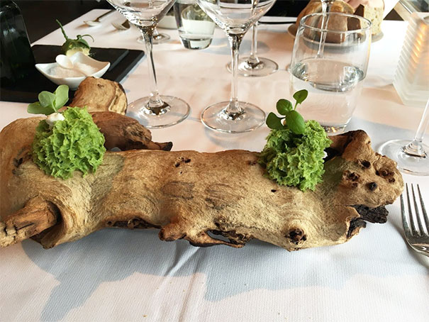 """Wasabi Spongecake With A 'Wow' Factor. As In: """"Wow, Some Tool Has Served My Dessert On A Tree."""""""