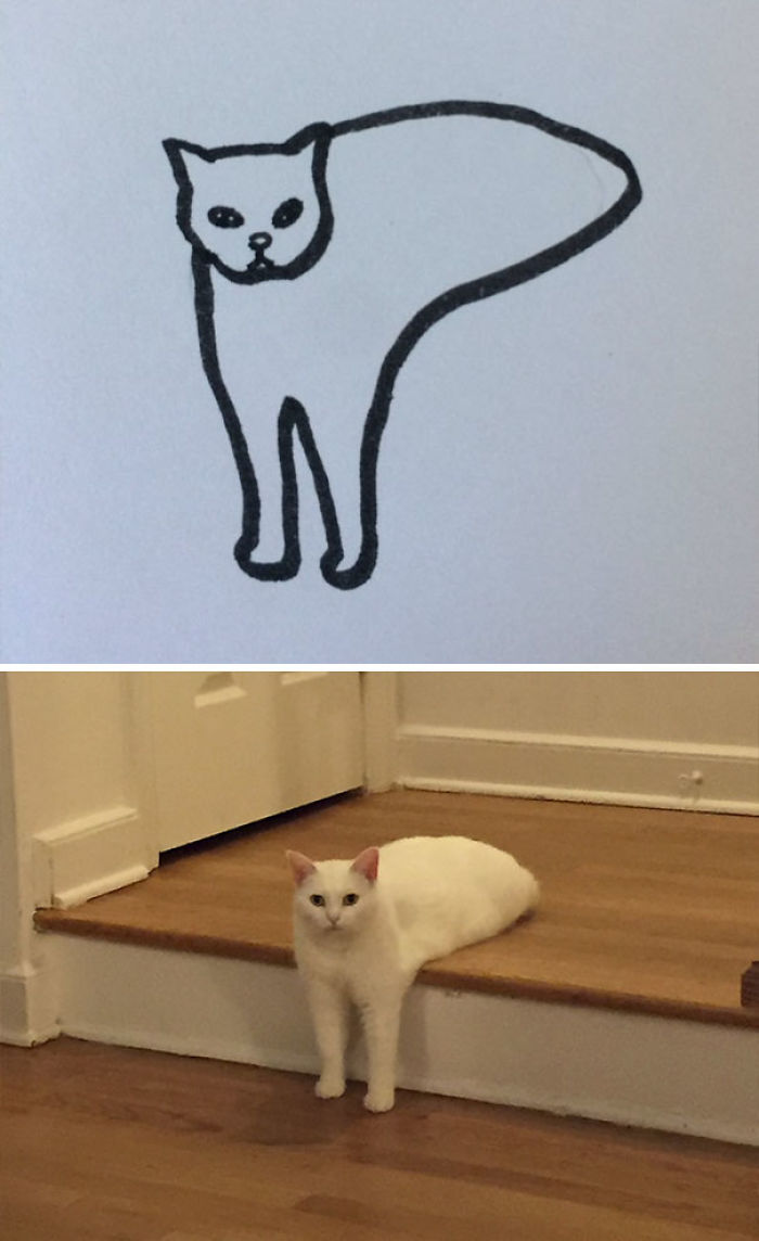Poorly Drawn Cat