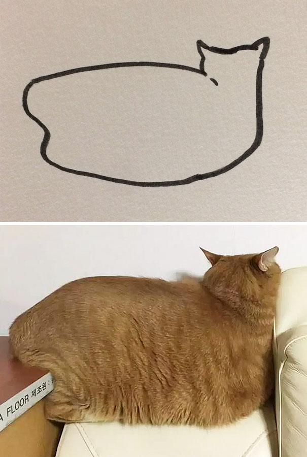 Kucing malas