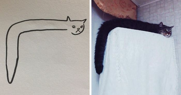 When Your Teacher Keeps Saying You Can T Draw Cats But Your