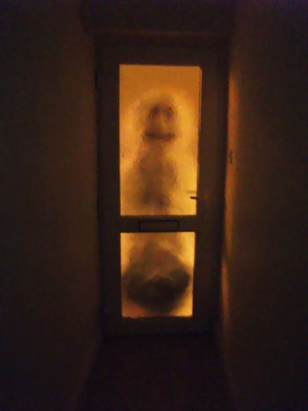 My Housemate Has To Get Up At 4am For A Train. I'll Just Leave This Snowman Here