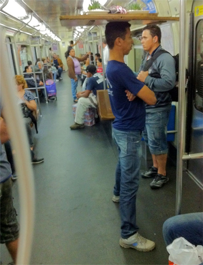 A Guy On The Subway Balancing Two Vase Plants On His Head Because Of Reasons