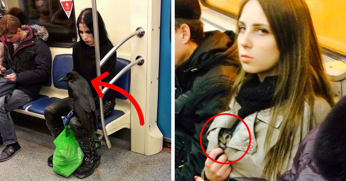 Of The Weirdest People Ever Spotted Riding On The Subway Bored Panda