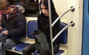 10+ Of The Weirdest People Ever Spotted Riding On The Subway