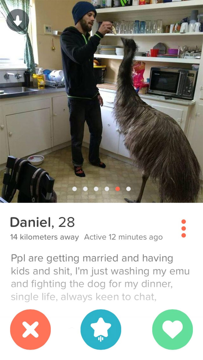 This Emu Dude