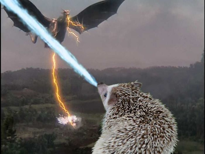 My Pet Hedgehog Has A Secret Life: Hedgezilla!