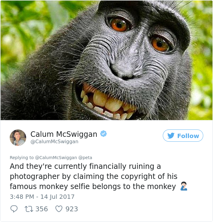 Guy Brutally Roasts PETA On Twitter, And People Are Finally Realizing The Truth