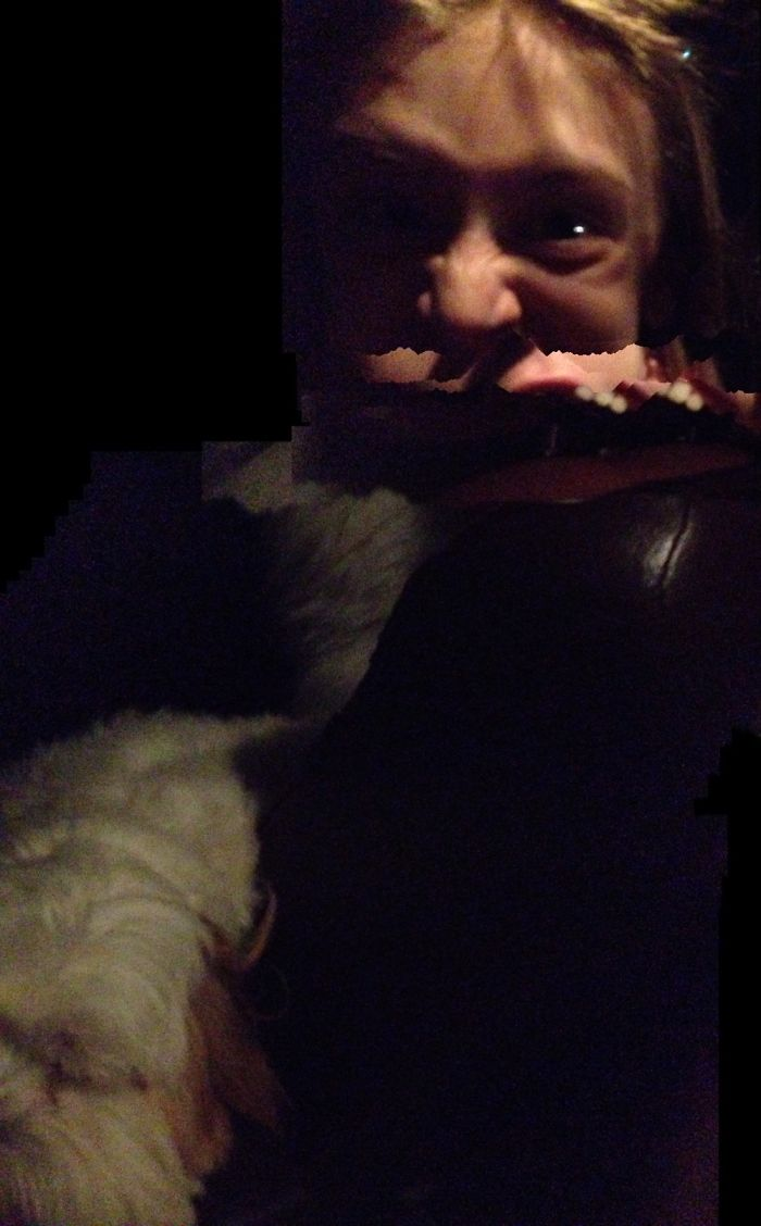 I Tried To Take A Panorama Of My Dog And My Best Freind