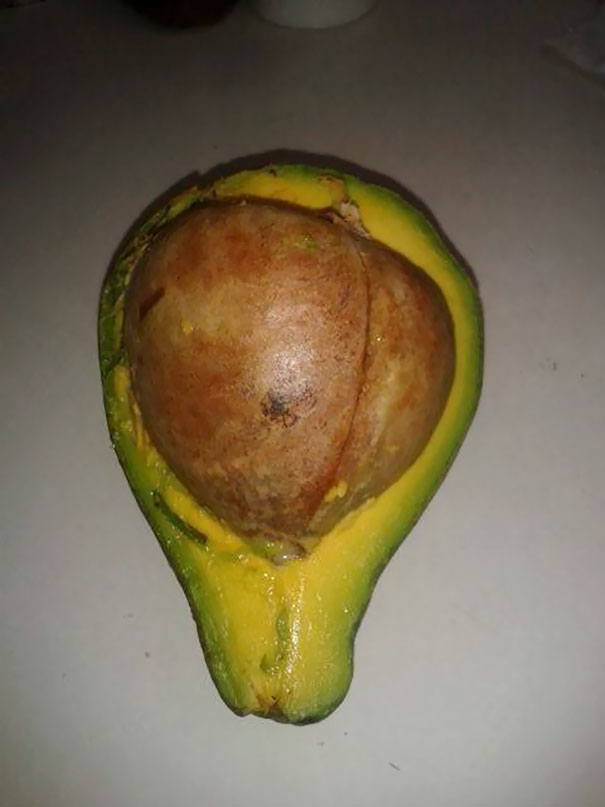 I Chose The Biggest Avocado To Make Guacamole, I Think It's Not Going To Happen