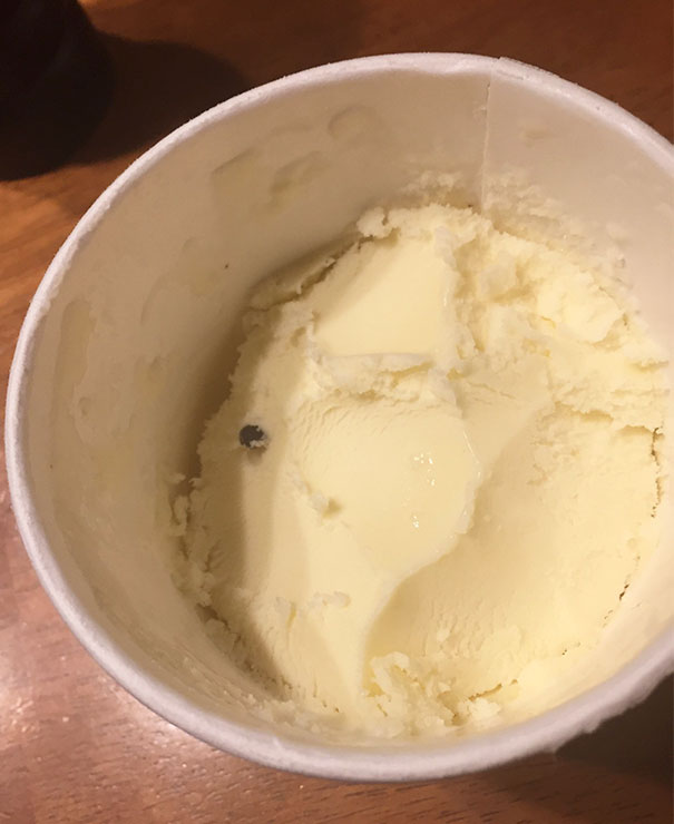 My Chocolate Chip Ice Cream