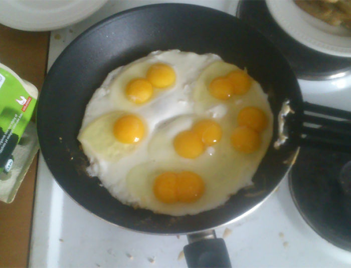 I Bought Ecological Eggs, 5/6 Double Yolk