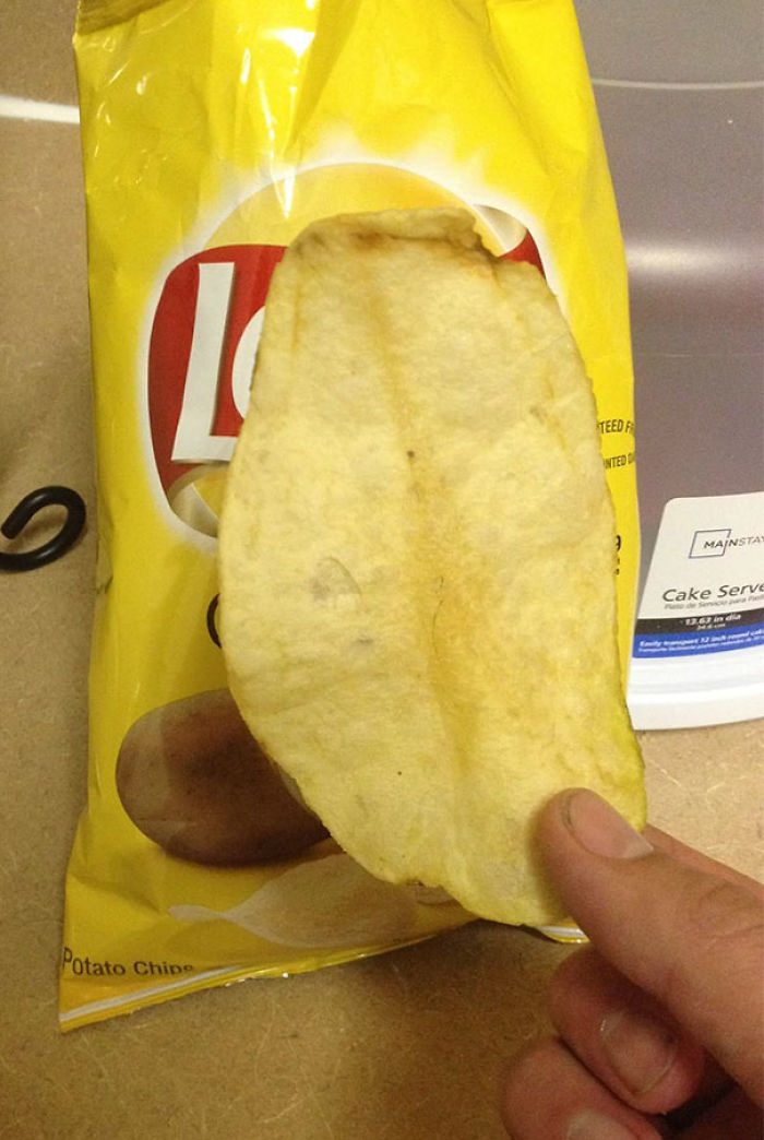 A Very Large Potato Chip, Which I Found In My Bag Of Potato Chips
