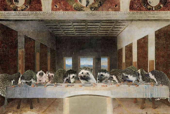 The Quilly Supper