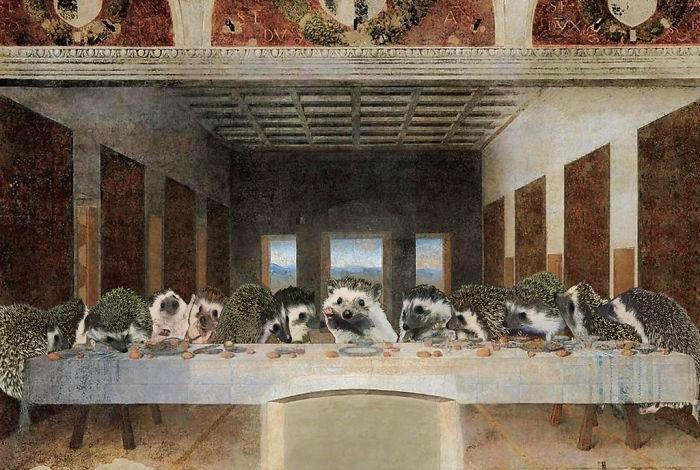 The Amazing World Of Hedgehog Art History