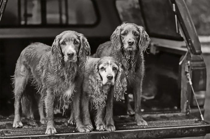 Chauncey (middle), 12 Years Old, Daughter Sailor Girl (left) And Ready Girl (right), 6 Years Old, Juneau, Alaska