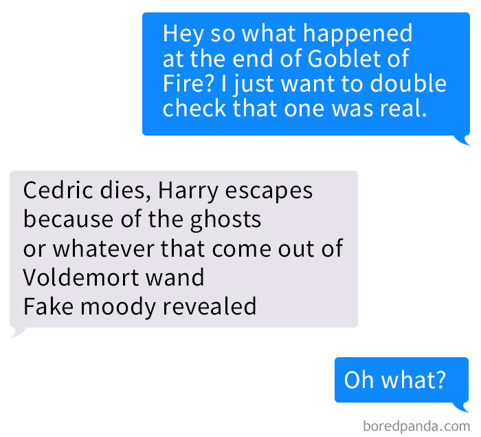 text-guy-accidentally-read-harry-potter-book-shelley-zhang-22