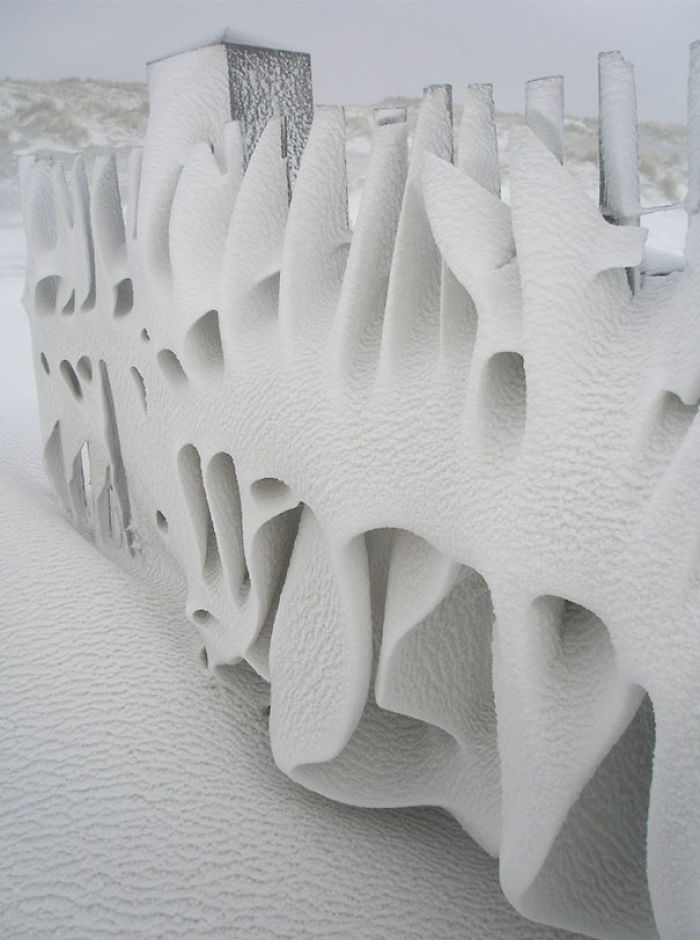 Art Only Nature Can Create. My Fence This Morning After A Snowy Night On Terschelling, The Netherlands