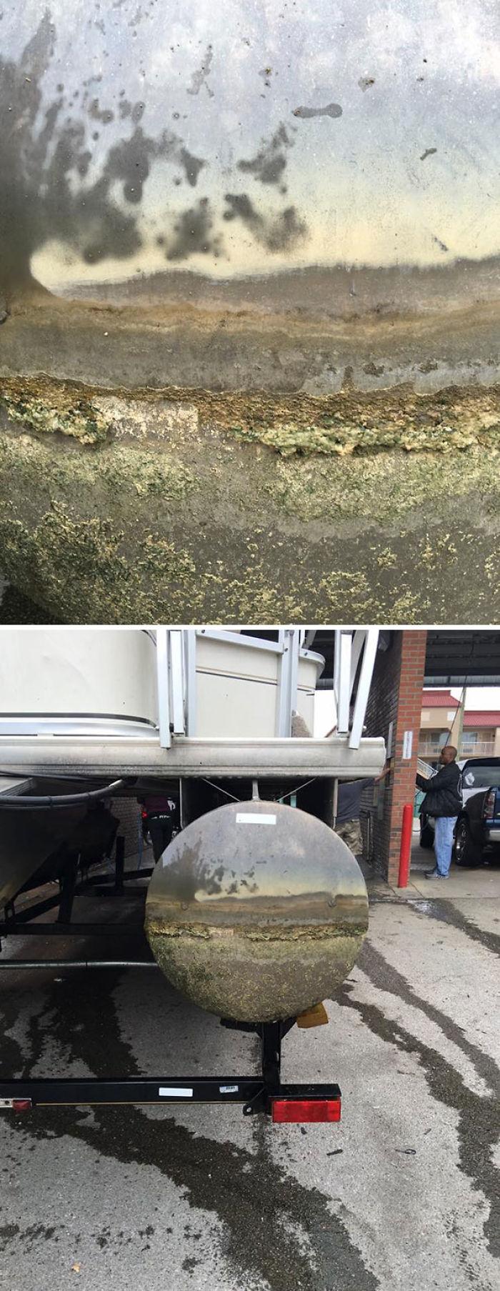 The Algae On My Pontoon Boat Looks Like A Pretty Good Painting