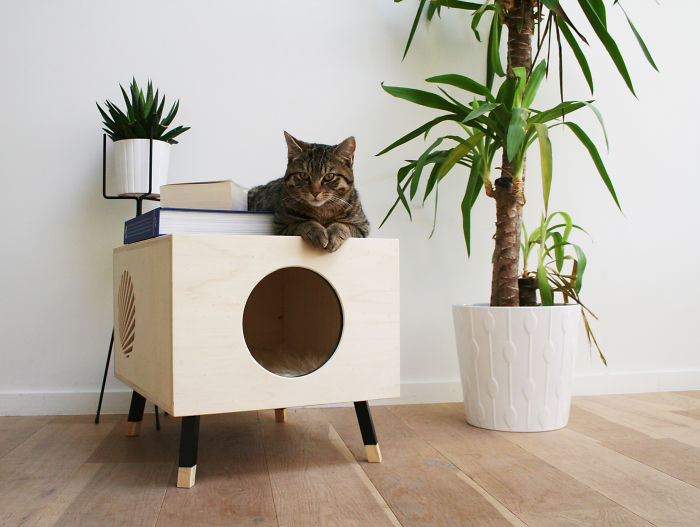 We Thought About Cat Furniture That Won't Cramp Your Home Interior