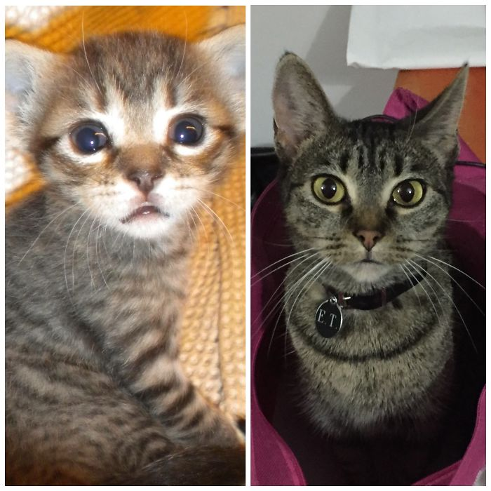 Et When She Was 4weeks In 2011 & Now 5 Years Later