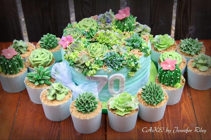 Succulent Cake And Cupcakes