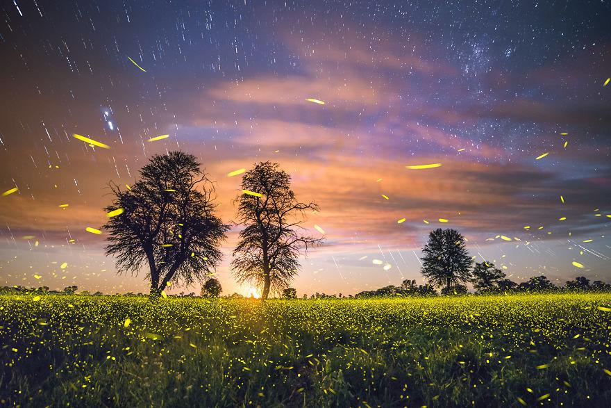Brushtroke Of Light ©2016 Brandon C. Giesbrecht