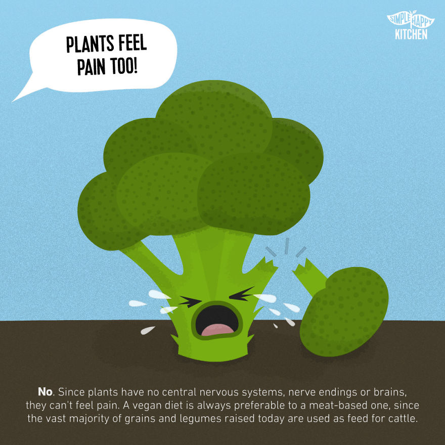 10+ Illustration That Will Change Your Mind About Veganism