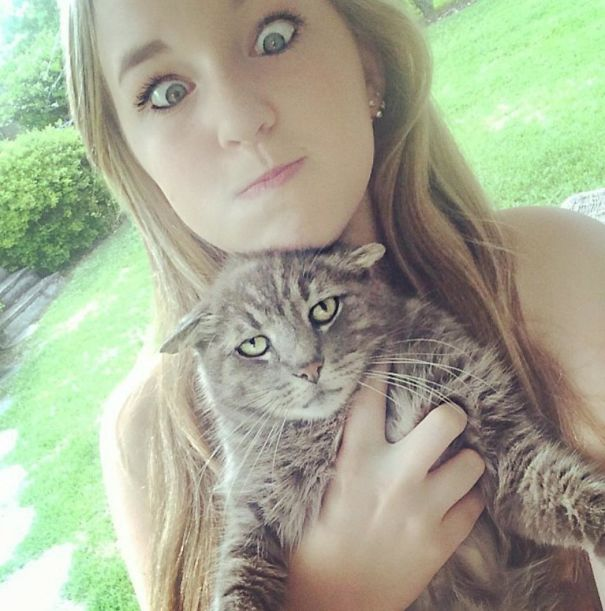 proxy - Selfies with Cats - Jokes and Humor