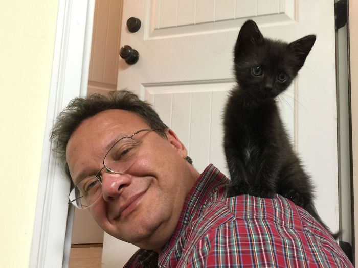 My Girlfriend's Dad Doesn't Like Cats So He Says, Looks Like She Won Him Over