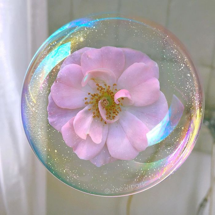 ===Tras una pompa de jabón=== Bubbles-and-flowers-allow-me-to-reproduce-the-moods-and-the-colours-I-see-or-want-to-see-598d5c1ccf749__700