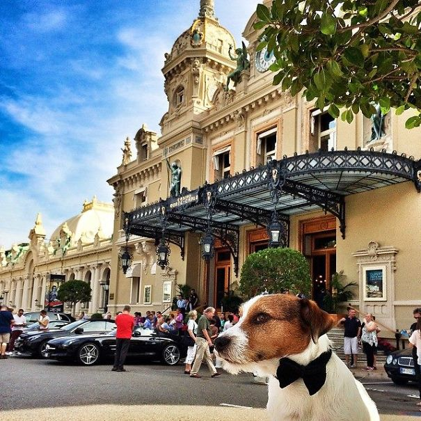 My Name Is Monk, James Monk. Agent Double-bone-7. At Casino Monte-carlo, Monaco