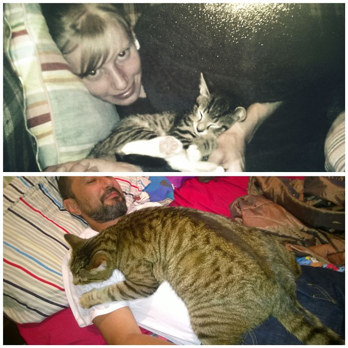 I Couldn't Resist Adding Another One Of Pussy. Cuddles Sure Have Changed In 7 Years!