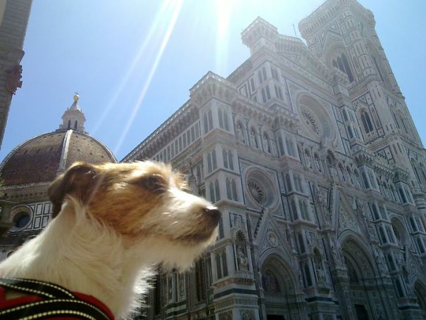 Florence, Italy. I Look Majestic
