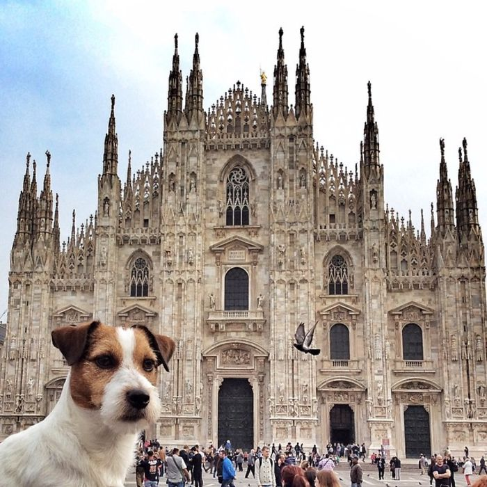 Mr. Traveller Reporting From Duomo Di Milano, Italy